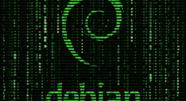"""Debian"" by ""medithIT"" on Flickr"